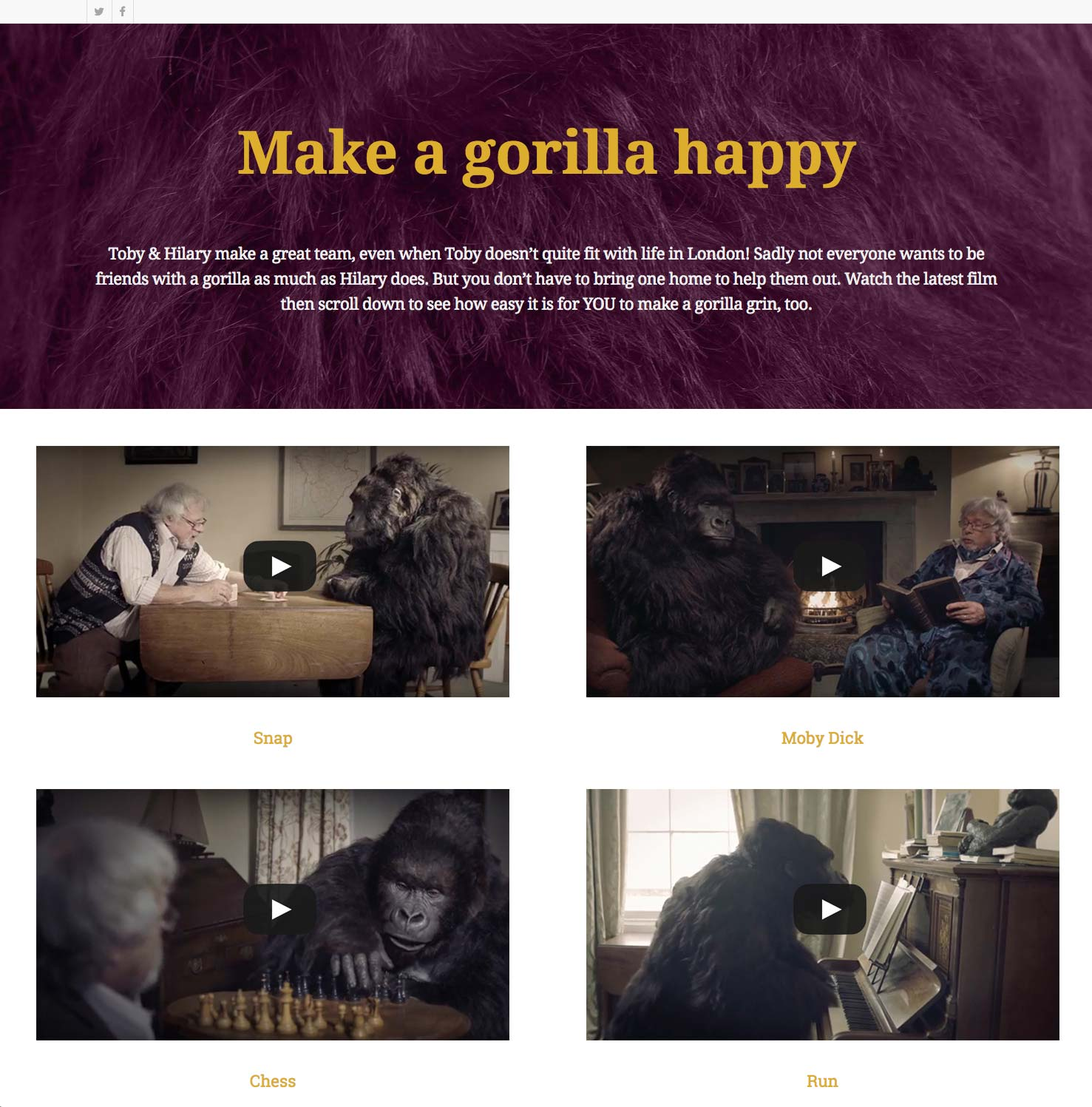 My Gorilla - London Web Design